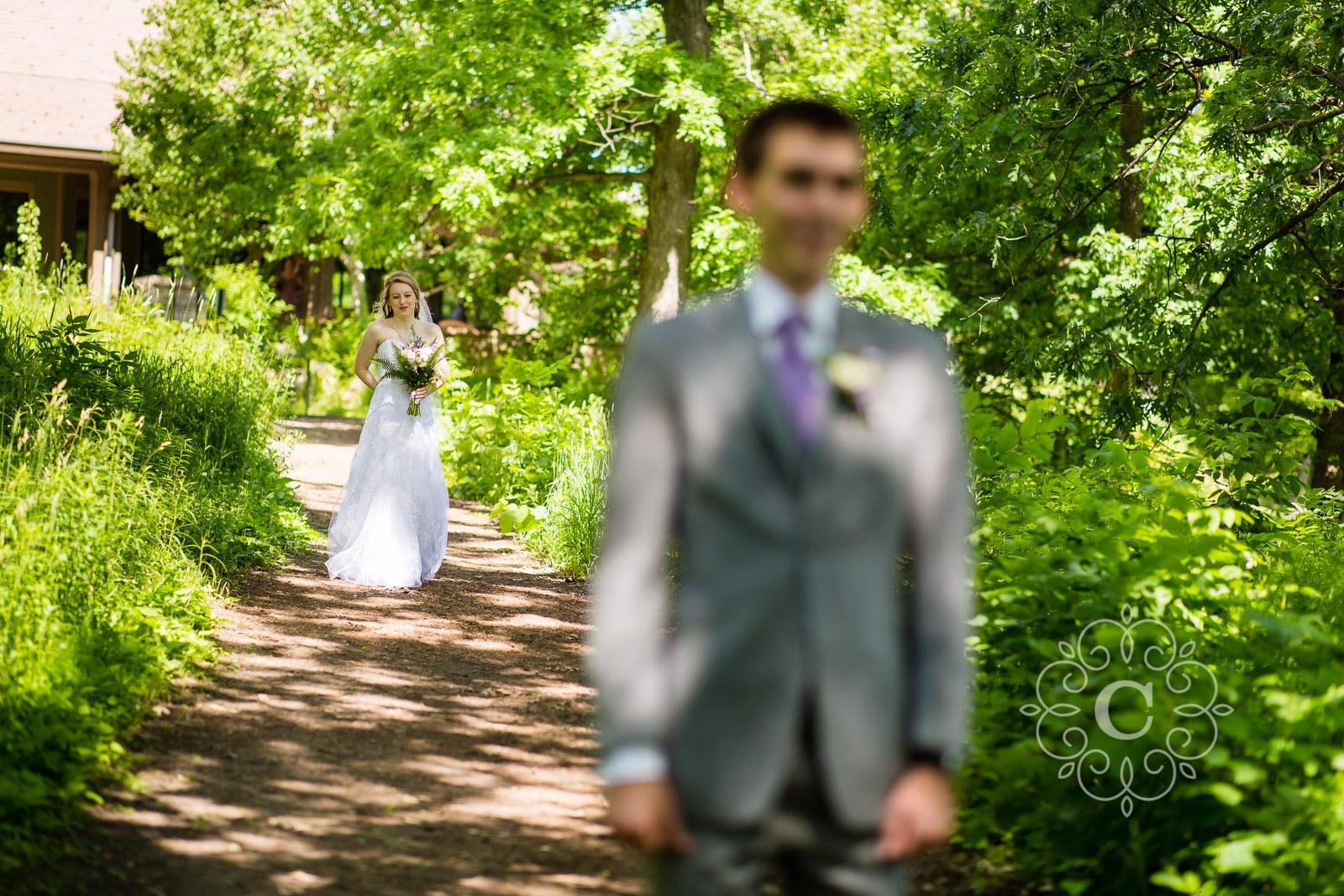 Silverwood Park St Anthony MN Wedding Photos