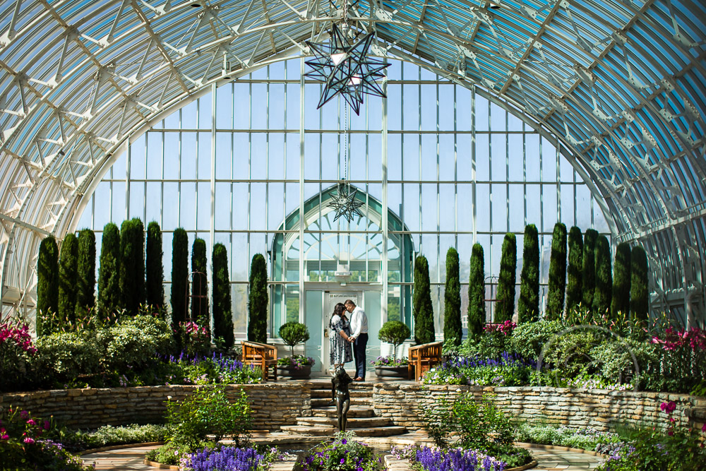 Como Park Conservatory St Paul MN Engagement Photo