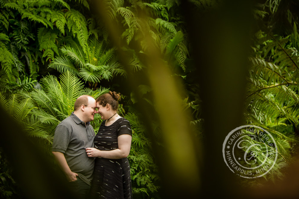Minneapolis Engagement Photographer Como Park Conservatory MN Engagement Photo