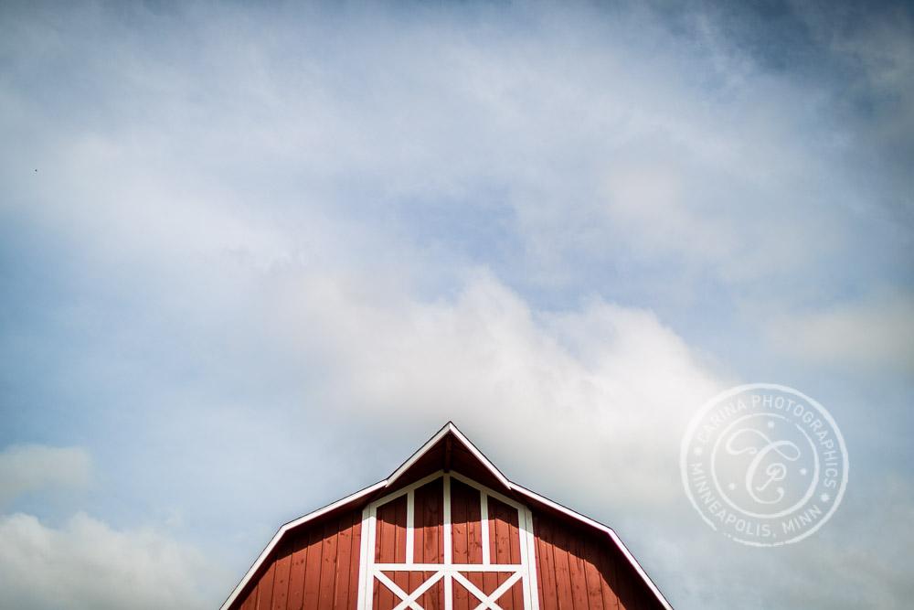 minneapolis barn farm wedding photo 28 Barn, Farm, River + Woods Wedding Minneapolis MN | Shane + Mandy