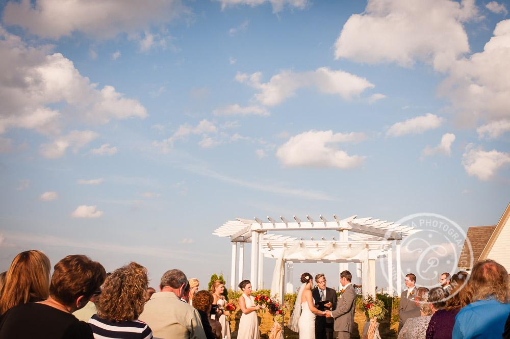 minnesota vineyard winery wedding photo 34 Minnesota Vineyard Winery Wedding | Katie + Bob