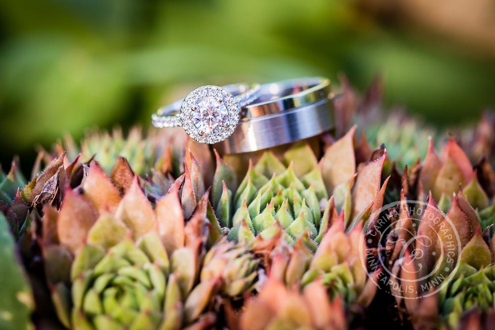 St Paul Garden Wedding Rings Succulents